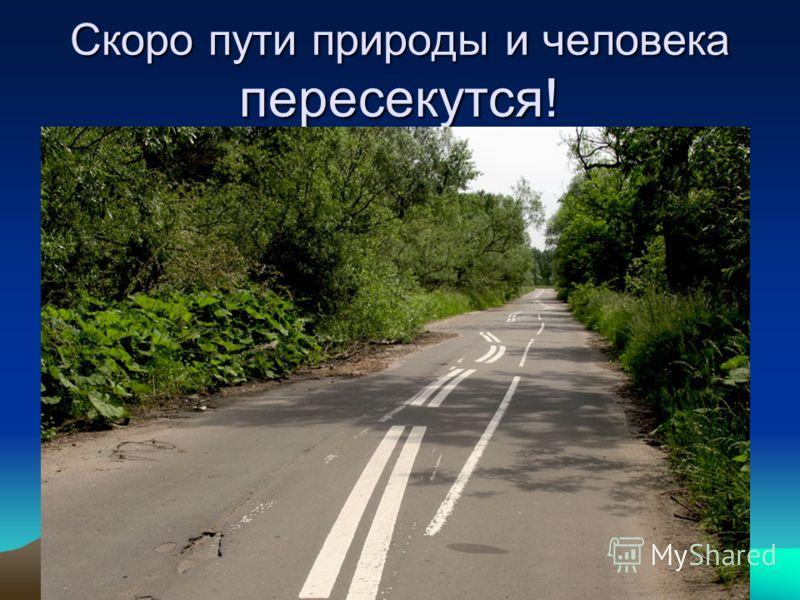 Скоро пути природы и человека пересекутся!