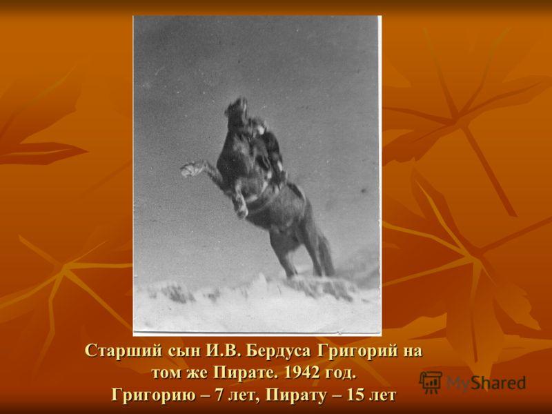 Старший сын И.В. Бердуса Григорий на том же Пирате. 1942 год. Григорию – 7 лет, Пирату – 15 лет
