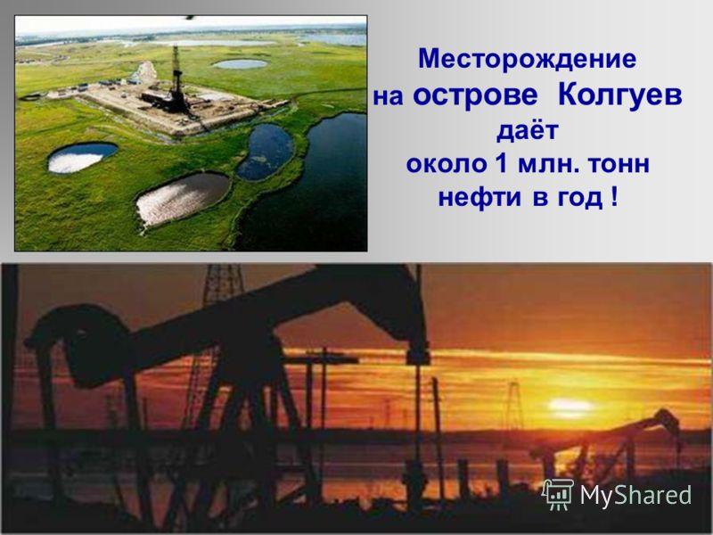 Нефтяная вышка позволяет сверлить скважины на дне моря На территории Мурманской области нет топливных полезных ископаемых. Добыча нефти Но в Баренцевом море обнаружены большие месторождения нефти и газа: Мурманское, Кильдинское, Штокмановское.