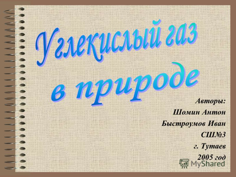 Авторы: Шомин Антон Быстроумов Иван СШ3 г. Тутаев 2005 год