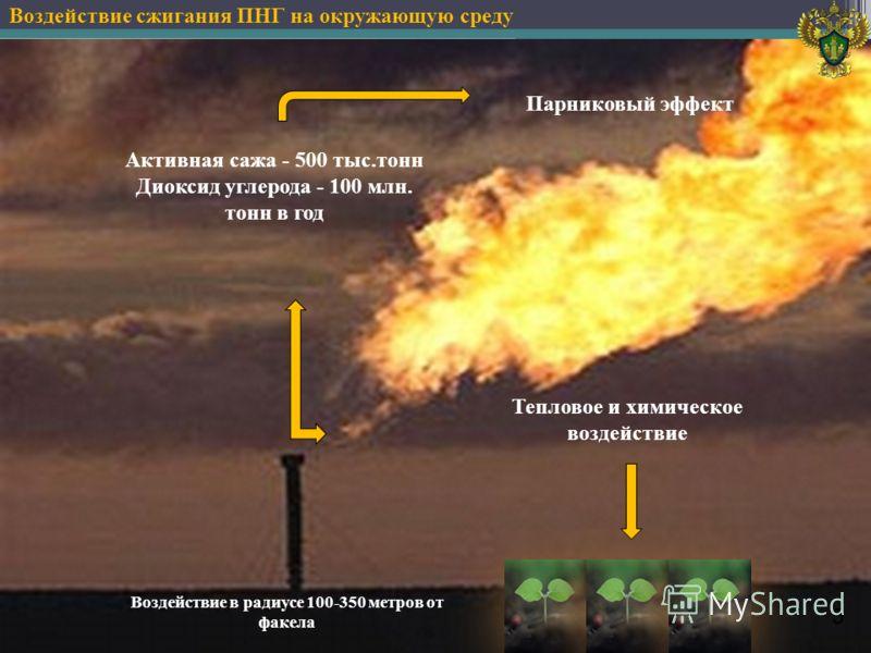 Воздействие в радиусе 100-350 метров от факела Воздействие сжигания ПНГ на окружающую среду 5 Активная сажа - 500 тыс.тонн Диоксид углерода - 100 млн. тонн в год Тепловое и химическое воздействие Парниковый эффект