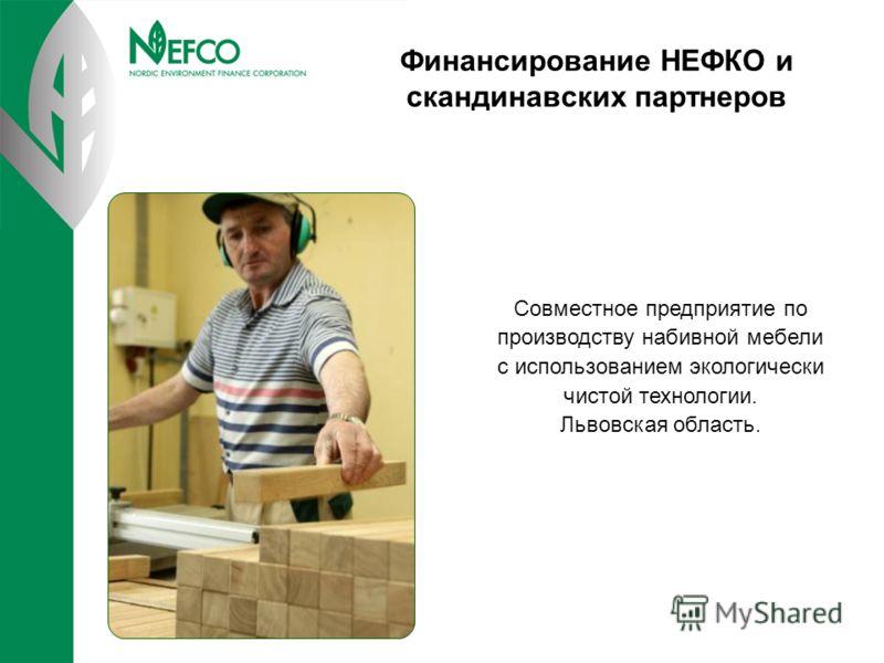 Совместное предприятие по производству набивной мебели с использованием экологически чистой технологии. Львовская область. Финансирование НЕФКО и скандинавских партнеров