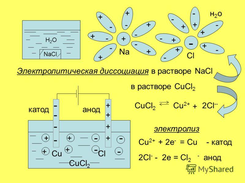 Н2ОН2О NaCl н2он2о + + Na - Cl + + + + + +- - - - - - - - - - - - - + + + + + Электролитическая диссоциация в растворе NaCl + + + + - - - - ++ + + -- - - ClCu CuCl 2 2Cl -- CuCl 2 Cu 2+ + в растворе CuCl 2 электролиз Cu 2+ + 2e - = Cu - катод 2Сl - -