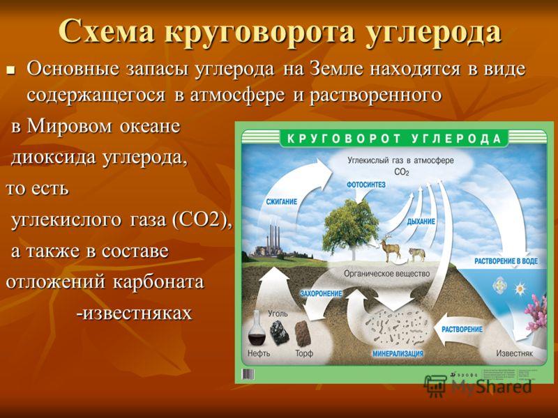 Основные запасы углерода на Земле находятся в виде содержащегося в атмосфере и растворенного Основные запасы углерода на Земле находятся в виде содержащегося в атмосфере и растворенного в Мировом океане в Мировом океане диоксида углерода, диоксида уг