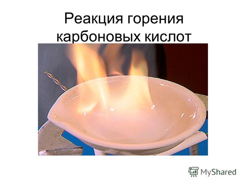 6. Реакция горения
