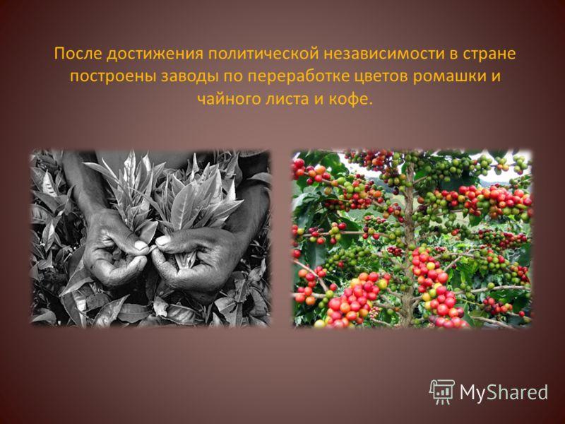 После достижения политической независимости в стране построены заводы по переработке цветов ромашки и чайного листа и кофе.
