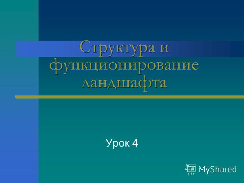 Структура и функционирование ландшафта Урок 4