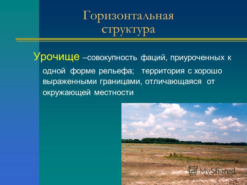 Урочище –совокупность фаций, приуроченных к одной форме рельефа; территория с хорошо выраженными границами, отличающаяся от окружающей местности Горизонтальная структура