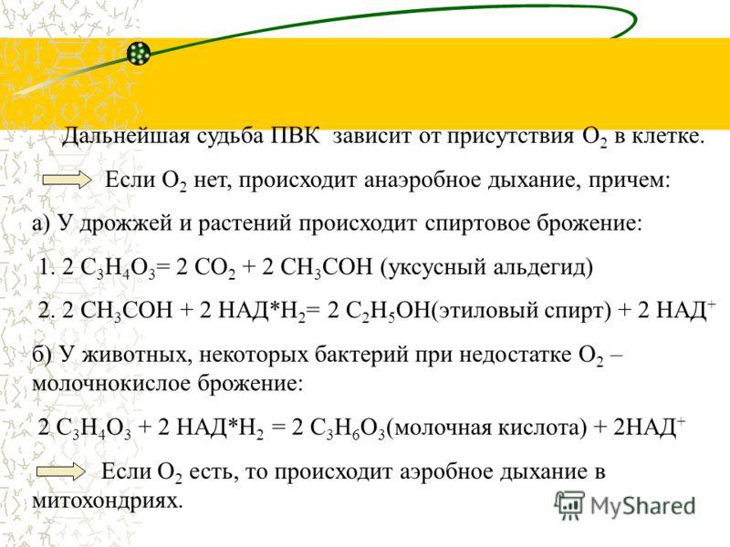 Окисление глюкозы происходит путем дегидрирования, акцептором Н служит НАД +. Реакции протекают в цитоплазме, С 6 Н 12 О 6 с помощью 10 ферментативных реакций превращается в 2 молекулы ПВК – пировиноградной кислоты: С 6 Н 12 О 6 + 2 АДФ + 2Н 3 РО 4 +