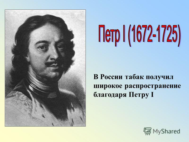 В России табак получил широкое распространение благодаря Петру I
