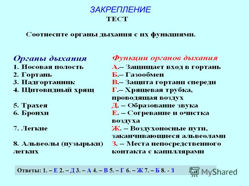 ЗАКРЕПЛЕНИЕ Ответы: 1. – Е 2. – Д 3. – А 4. – В 5. – Г 6. – Ж 7. – Б 8. - З