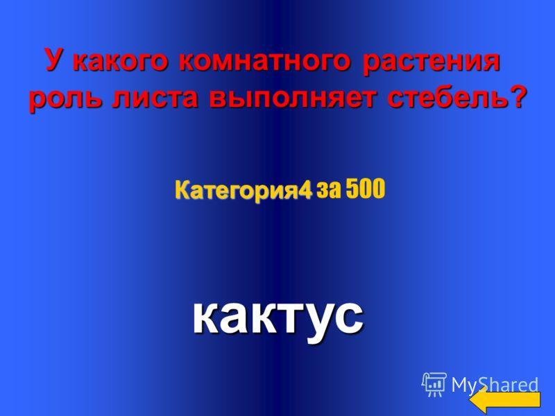 Какой вал изображён на картине Айвазовского? на картине Айвазовского?9 Категория4 Категория4 за 400