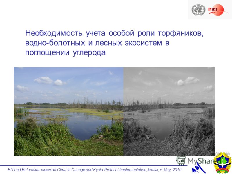 EU and Belarusian views on Climate Change and Kyoto Protocol Implementation, Minsk, 5 May, 2010 Необходимость учета особой роли торфяников, водно-болотных и лесных экосистем в поглощении углерода