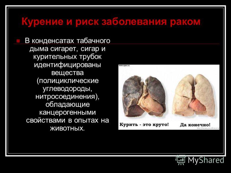 В конденсатах табачного дыма сигарет, сигар и курительных трубок идентифицированы вещества (полициклические углеводороды, нитросоединения), обладающие канцерогенными свойствами в опытах на животных. Курение и риск заболевания раком