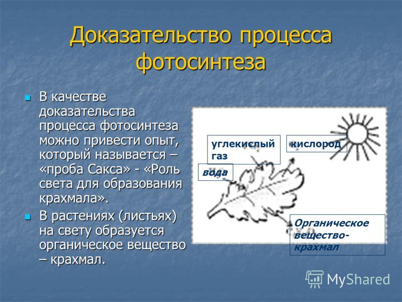 Доказательство процесса фотосинтеза В качестве доказательства процесса фотосинтеза можно привести опыт, который называется – «проба Сакса» - «Роль света для образования крахмала». В качестве доказательства процесса фотосинтеза можно привести опыт, ко