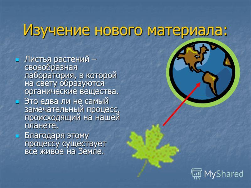 Изучение нового материала: Листья растений – своеобразная лаборатория, в которой на свету образуются органические вещества. Листья растений – своеобразная лаборатория, в которой на свету образуются органические вещества. Это едва ли не самый замечате