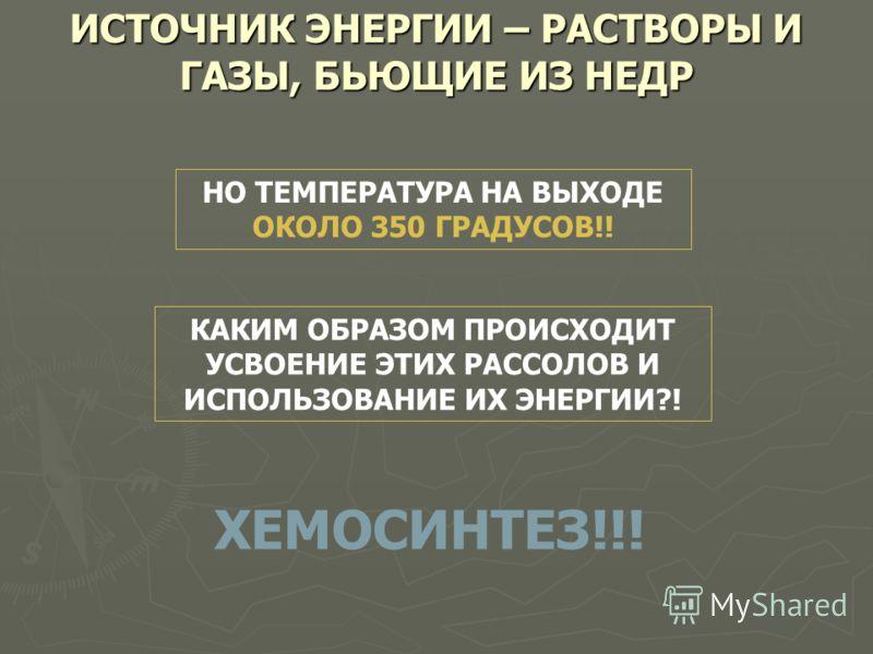 ИСТОЧНИК ЭНЕРГИИ – РАСТВОРЫ И ГАЗЫ, БЬЮЩИЕ ИЗ НЕДР НО ТЕМПЕРАТУРА НА ВЫХОДЕ ОКОЛО 350 ГРАДУСОВ!! КАКИМ ОБРАЗОМ ПРОИСХОДИТ УСВОЕНИЕ ЭТИХ РАССОЛОВ И ИСПОЛЬЗОВАНИЕ ИХ ЭНЕРГИИ?! ХЕМОСИНТЕЗ!!!