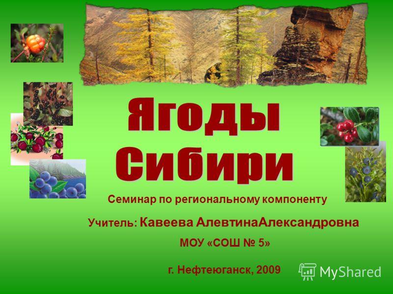 Семинар по региональному компоненту Учитель: Кавеева АлевтинаАлександровна МОУ «СОШ 5» г. Нефтеюганск, 2009