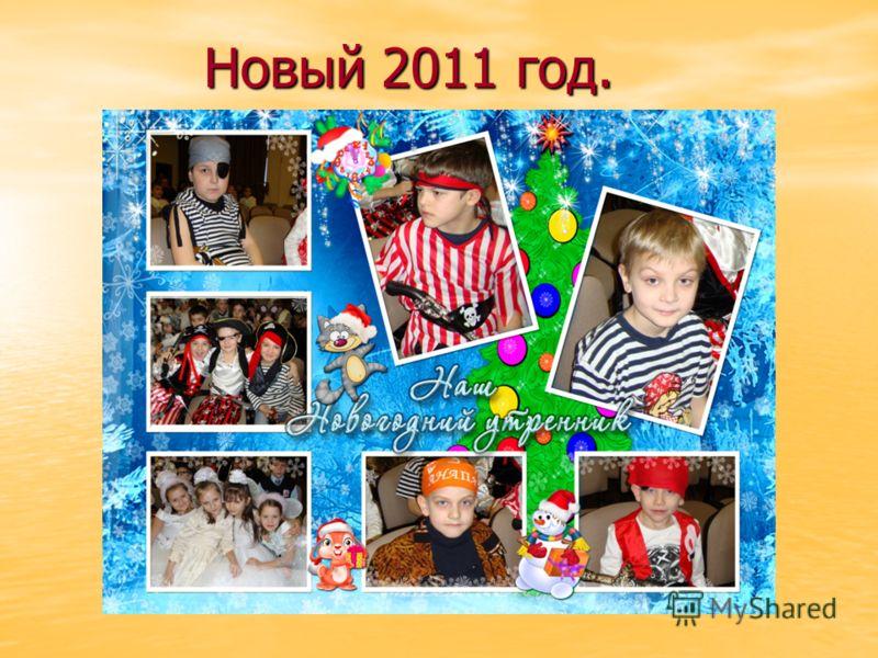 Новый 2011 год. Новый 2011 год.