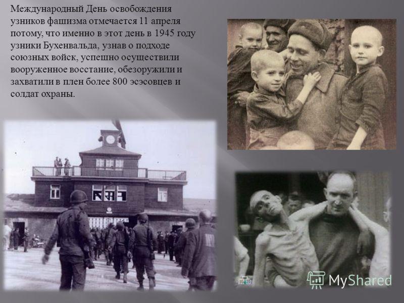 Международный День освобождения узников фашизма отмечается 11 апреля потому, что именно в этот день в 1945 году узники Бухенвальда, узнав о подходе союзных войск, успешно осуществили вооруженное восстание, обезоружили и захватили в плен более 800 эсэ