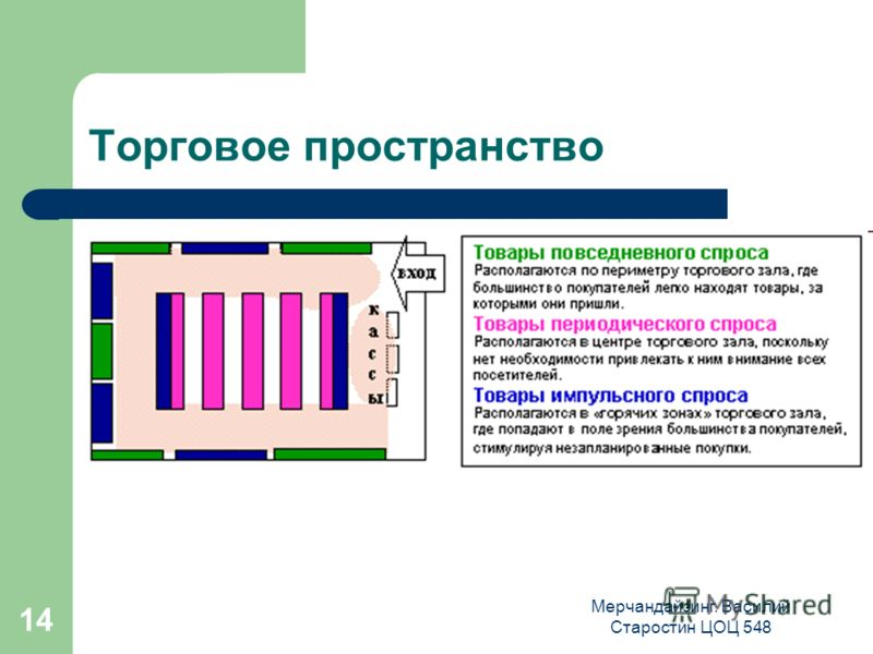 Мерчандайзинг. Василий Старостин ЦОЦ 548 14 Торговое пространство