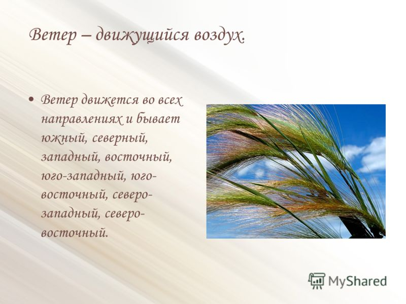 Ветер – движущийся воздух. Ветер движется во всех направлениях и бывает южный, северный, западный, восточный, юго-западный, юго- восточный, северо- западный, северо- восточный.