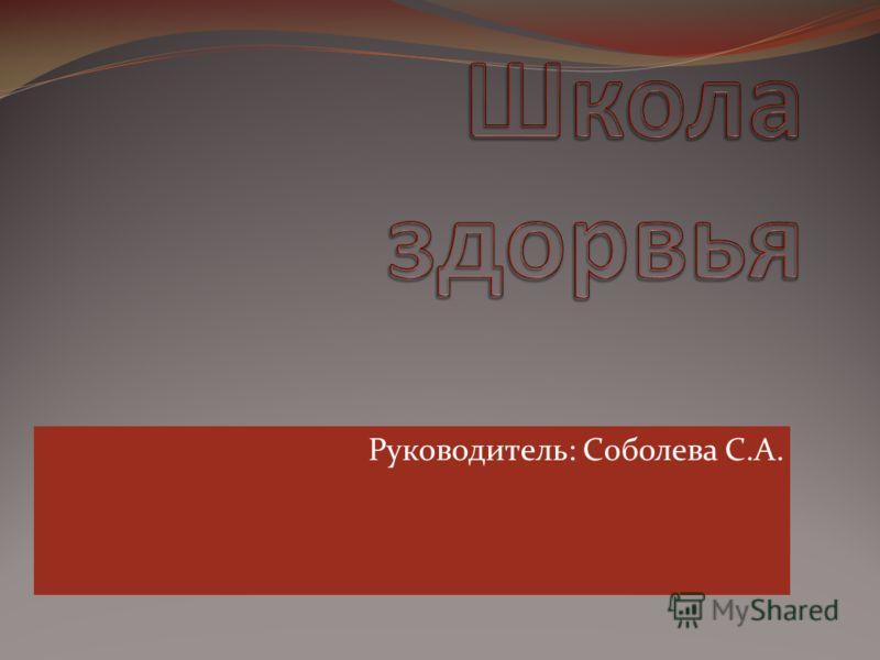 Руководитель: Соболева С.А.