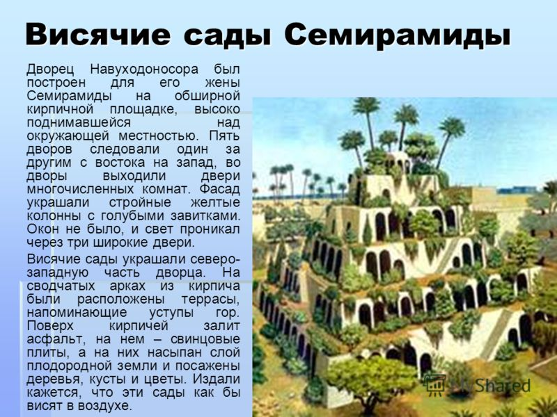Висячие сады Семирамиды Дворец Навуходоносора был построен для его жены Семирамиды на обширной кирпичной площадке, высоко поднимавшейся над окружающей местностью. Пять дворов следовали один за другим с востока на запад, во дворы выходили двери многоч