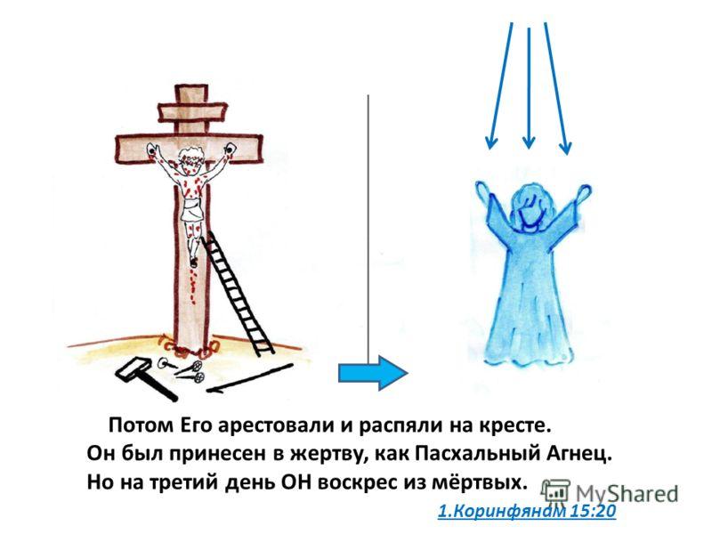 Потом Его арестовали и распяли на кресте. Он был принесен в жертву, как Пасхальный Агнец. Но на третий день ОН воскрес из мёртвых. 1.Коринфянам 15:20
