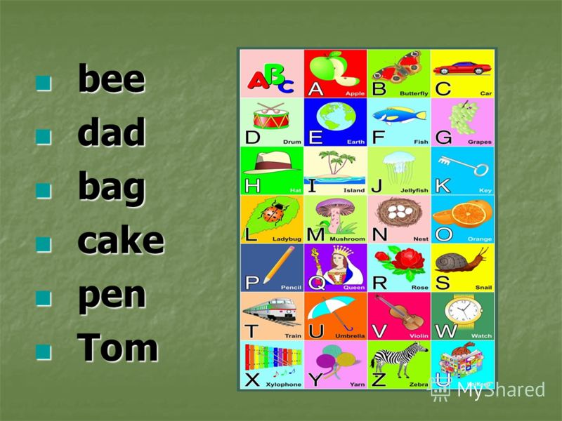 bee bee dad dad bag bag cake cake pen pen Tom Tom