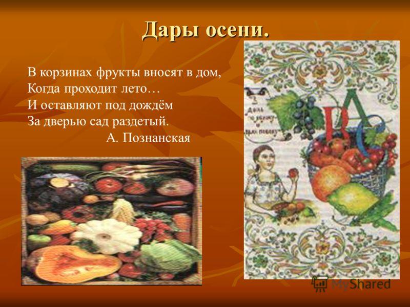Дары осени. В корзинах фрукты вносят в дом, Когда проходит лето… И оставляют под дождём За дверью сад раздетый. А. Познанская