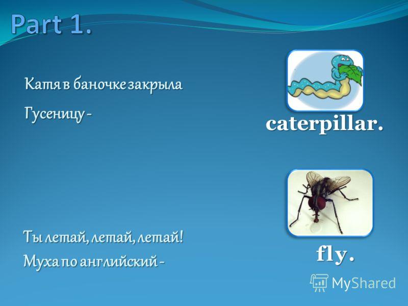 Катя в баночке закрыла Гусеницу - caterpillar. Ты летай, летай, летай! Муха по английский - fly.