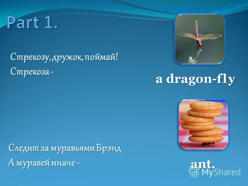 Стрекозу, дружок, поймай! Стрекоза - a dragon-fly Следит за муравьями Брэнд А муравей иначе - ant.