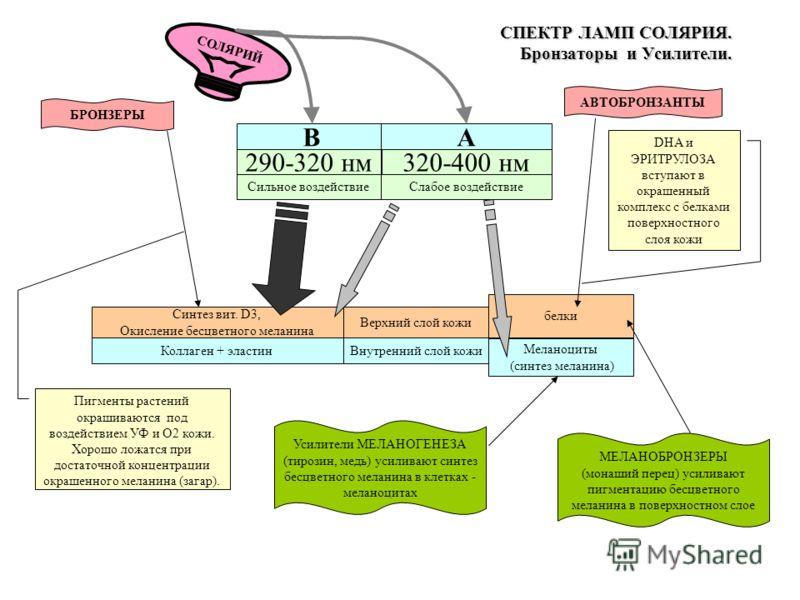 СПЕКТР ЛАМП СОЛЯРИЯ. Бронзаторы и Усилители. B 290-320 нм A 320-400 нм СОЛЯРИЙ Сильное воздействиеСлабое воздействие Синтез вит. D3, Окисление бесцветного меланина Коллаген + эластин Верхний слой кожи Внутренний слой кожи белки Меланоциты (синтез мел