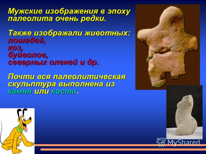 Мужские изображения в эпоху палеолита очень редки. Также изображали животных: лошадей,коз,буйволов, северных оленей и др. Почти вся палеолитическая скульптура выполнена из камня или кости.