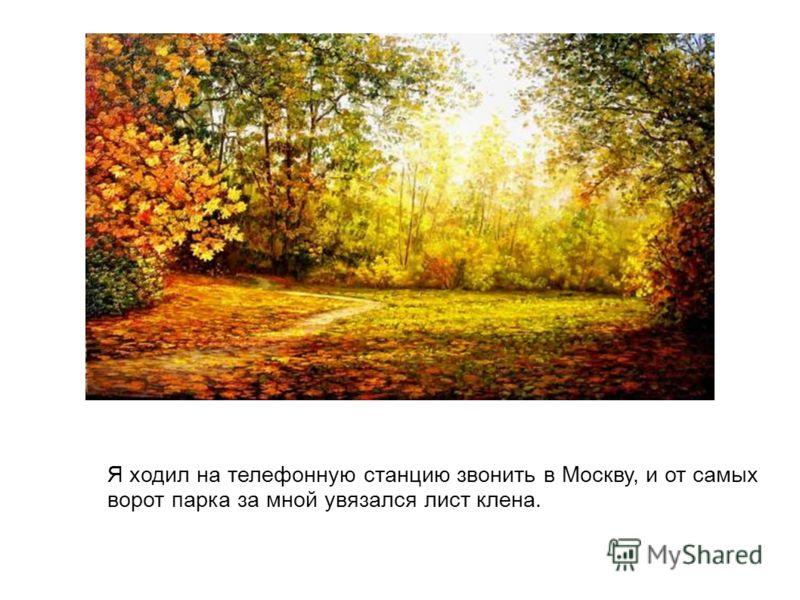 Я ходил на телефонную станцию звонить в Москву, и от самых ворот парка за мной увязался лист клена.