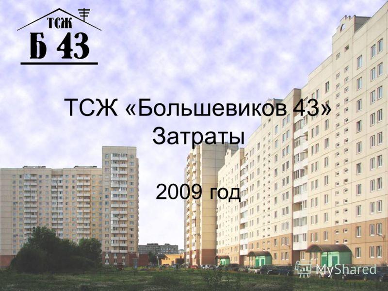 ТСЖ «Большевиков 43» Затраты 2009 год