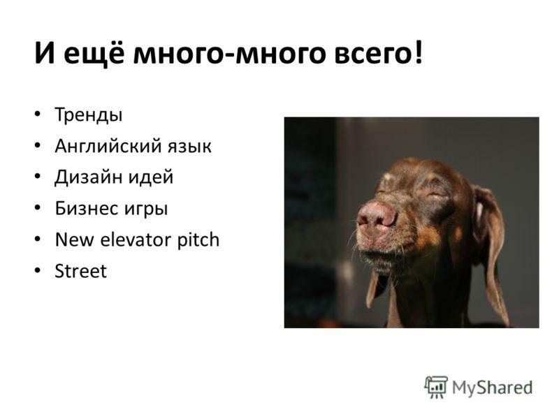 И ещё много-много всего! Тренды Английский язык Дизайн идей Бизнес игры New elevator pitch Street