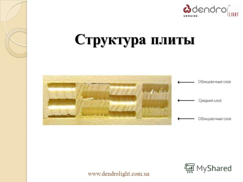 Структура плиты www.dendrolight.com.ua
