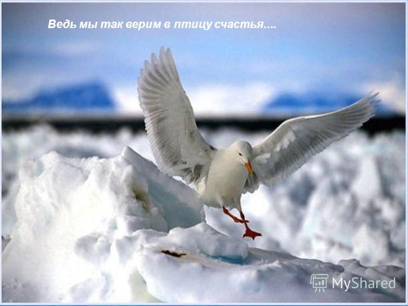 Желаем, чтобы в памяти оставалось только светлое!....