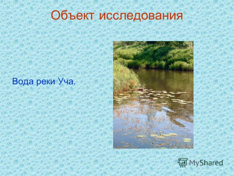 Объект исследования Вода реки Уча.