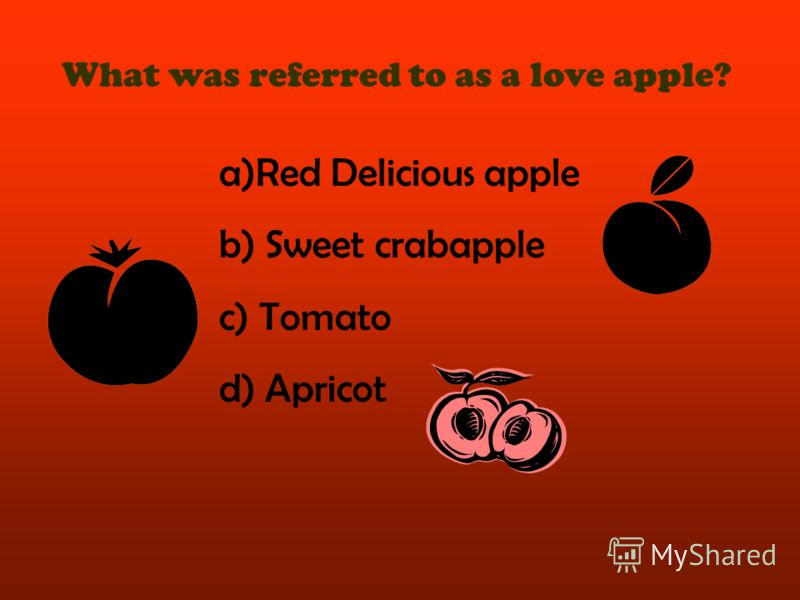 What was referred to as a love apple? a)Red Delicious apple b) Sweet crabapple c) Tomato d) Apricot