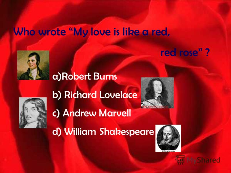Who wrote My love is like a red, red rose ? a)Robert Burns b) Richard Lovelace c) Andrew Marvell d) William Shakespeare
