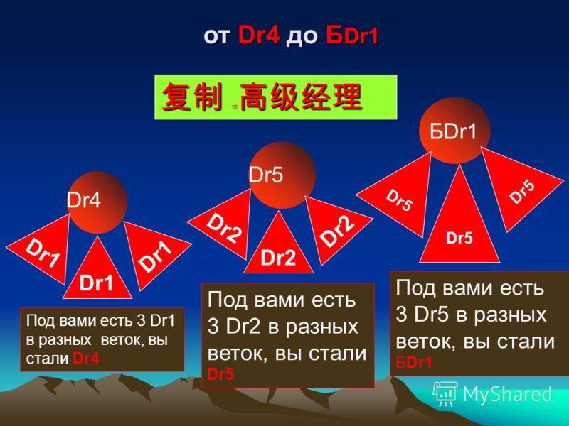 Dr Dr1 Под вами есть 1Dr, вы стали Dr1 Dr2 Dr Dr3 Под вами есть 2 Dr в разных веток, вы стали Dr2 Dr ОТ Dr1 ДО Dr3 ОТ Dr1 ДО Dr3 Под вами есть 3Dr в разных веток, вы стали Dr3