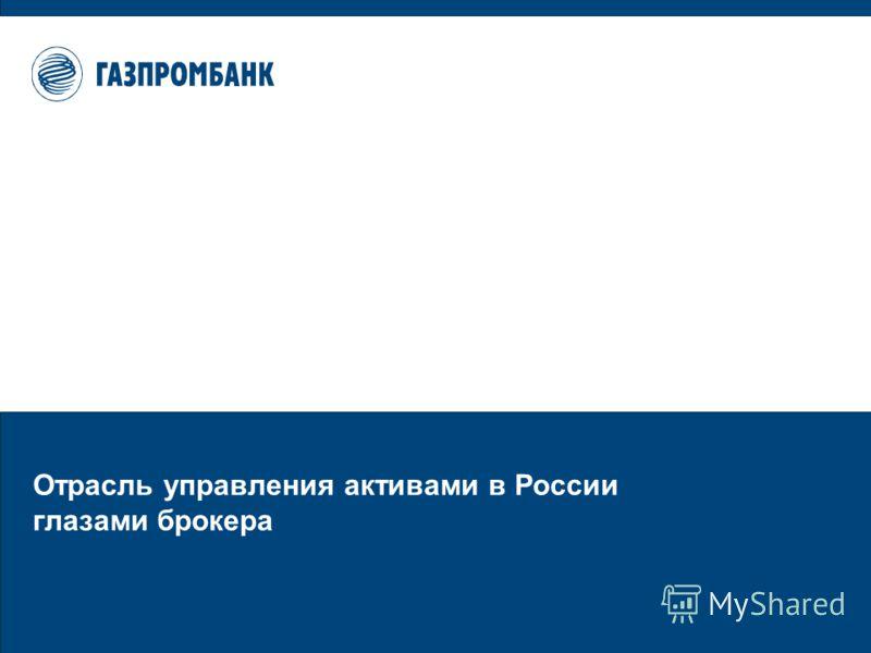 Отрасль управления активами в России глазами брокера