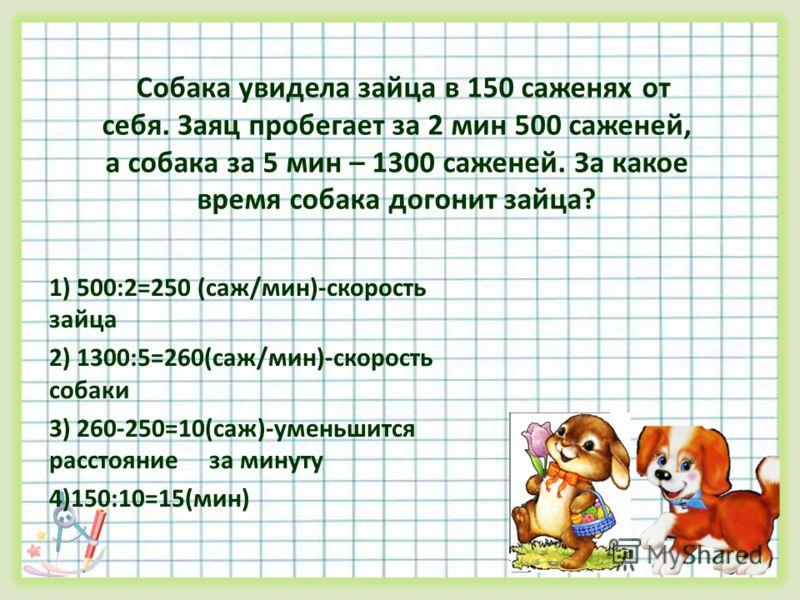 Собака увидела зайца в 150 саженях от себя. Заяц пробегает за 2 мин 500 саженей, а собака за 5 мин – 1300 саженей. За какое время собака догонит зайца? 1) 500:2=250 (саж/мин)-скорость зайца 2) 1300:5=260(саж/мин)-скорость собаки 3) 260-250=10(саж)-ум