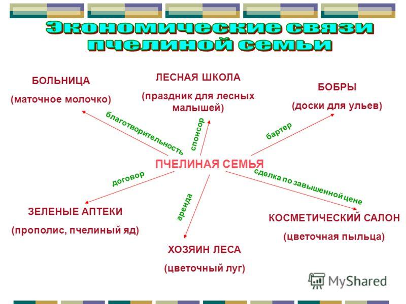 Поликлиника 58 невского района официальный сайт телефон