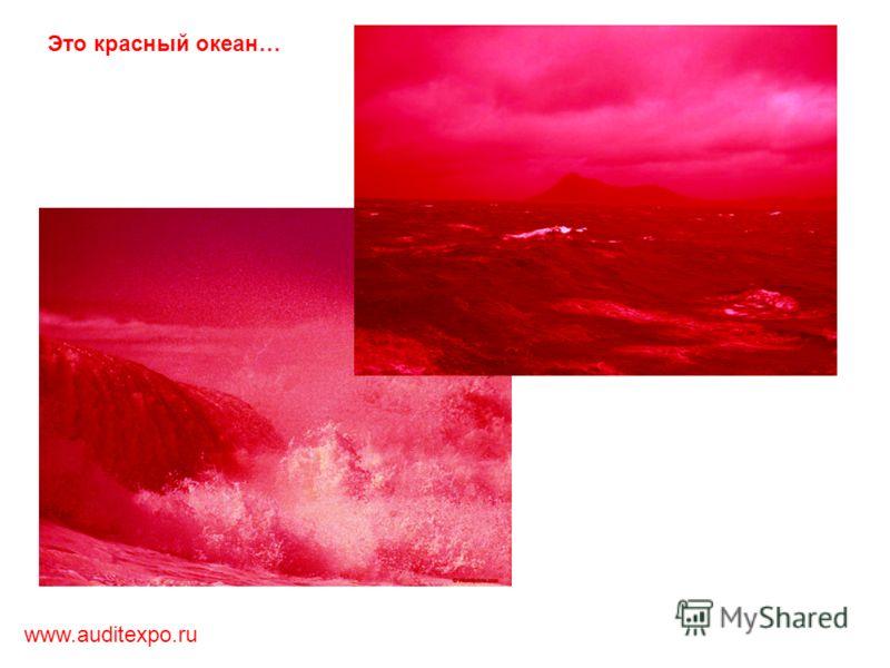 www.auditexpo.ru Это красный океан…