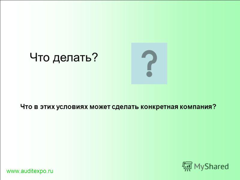 www.auditexpo.ru Что делать? Что в этих условиях может сделать конкретная компания?