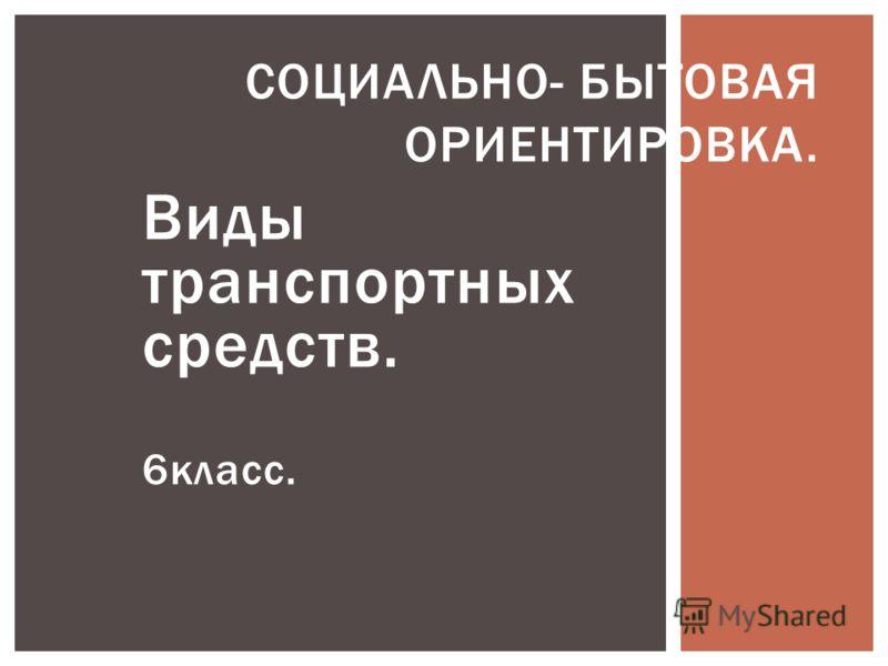 Виды транспортных средств. 6класс. СОЦИАЛЬНО- БЫТОВАЯ ОРИЕНТИРОВКА.